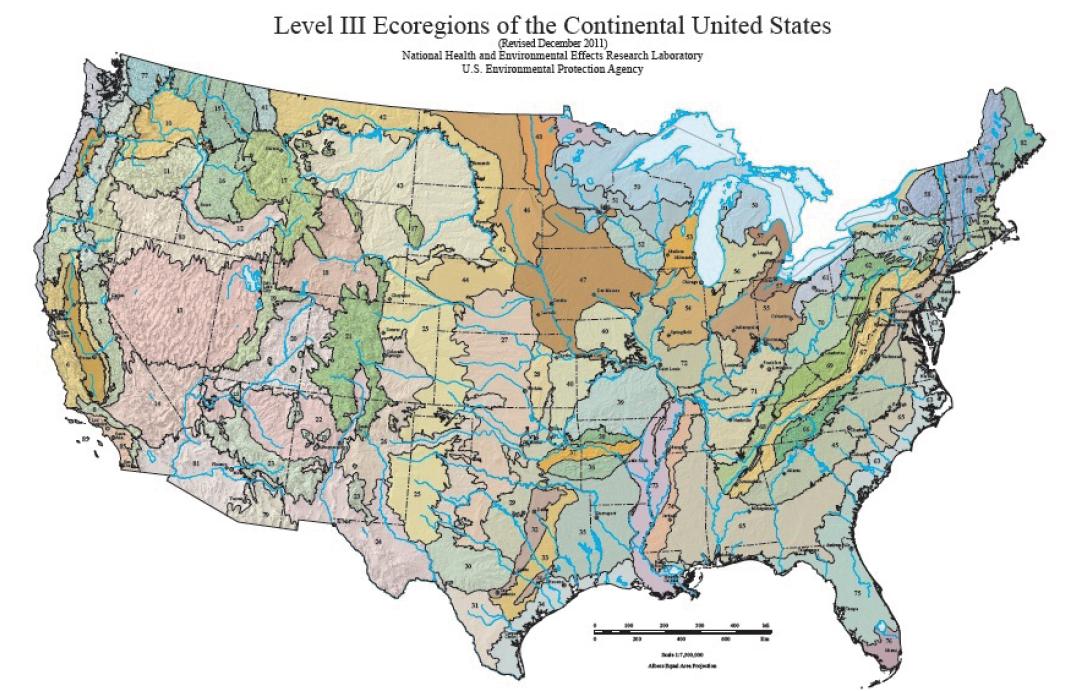 Ecosystem and Vegetation System Management | Environmental ...